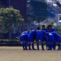 第34回神奈川県社会人選手権2回戦